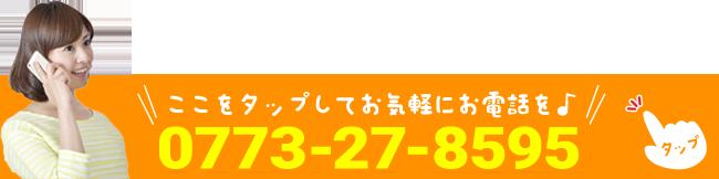 TEL0773-27-8595